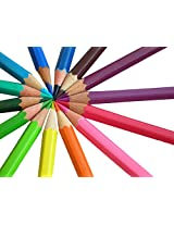 Set of 12 Fun and Bright Color Pencils - Comes in an Attractive Metal Box