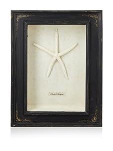Diamond Reef Starfish Shadow Box (Black)