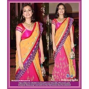Mirraw Dia Mirza Net Saree - Multicolour
