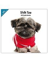 Shih Tzu MODERN 2014 Wall Calendar