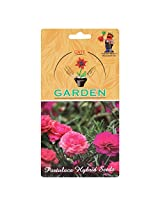 Portulaca F2 Hybrid Kariba extra double mix Flower Seeds by Gate Garden