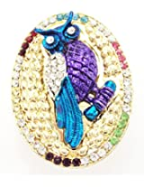 Khubsurat Owl Concept Saree Pin & Brooch, Multi Color Stone Stud and Enameled, Gold Tone For Men & Women