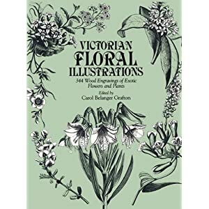 【クリックで詳細表示】Victorian Floral Illustrations: 344 Wood Engravings of Exotic Flowers and Plants (Dover Pictorial Archives) [ペーパーバック]