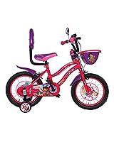 BSA Champ Dora Bicycle
