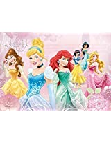 Disney Princess Snow White Cinderella 500 Piece Jigsaw Puzzle (Pc157)