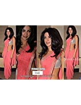 Bollywood Replica Saree of Priyanka - Arisha5145