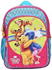 Pooh School Bag Wtp With Friends, Multi Color (14-inch)