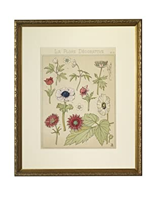 Late 19th Century La Flore Decorative Anemonees