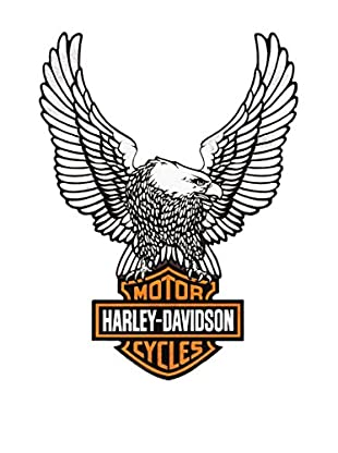 Artopweb Panel Decorativo Harley Davidson Eagle