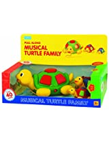 megcos Musical Turtle Family