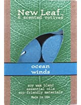 Candle-lite New Leaf  6-Pack Votives with Soy Wax, Ocean Winds