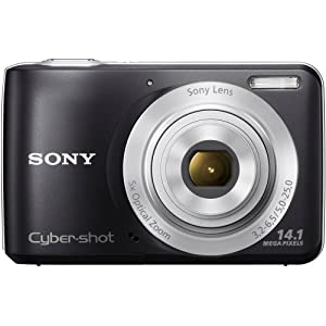 Sony Cyber-shot DSC-S5000 14.1MP Point and Shoot Camera (Black) with 5x Optical Zoom, Camera Case