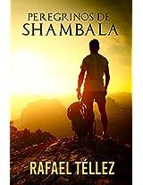 Peregrinos de Shambala: Viaje Iniciático aIndia  (Spanish Edition)