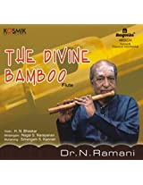 The Divine Bamboo - Flute