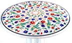 "24"" Dia Handcrafted Marble Coffee or Dining Table Top with Pietre Dura Artwork/Inlay work. Parrot De"