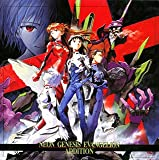 製品画像: NEON GENESIS EVANGELION ADDITION [Limited Edition]