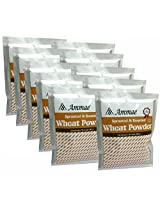 Ammae Sprouted Wheat Powder, 100g (Pack Of 10)