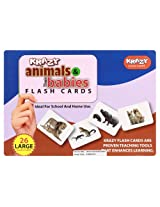 Krazy Animals & Babies - Flash Cards