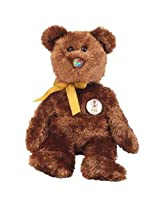 Ty Beanie Baby Champion The Fifa Bear ( South Africa ) (8.5 Inch)