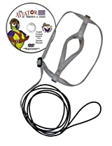 The AVIATOR Bird Harness and Leash: Large Silver