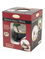 Beach Water Ball Globe by Classic Game Collection