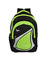 Bag-Age Spicy Large 30 (L) School Backpack (Green)