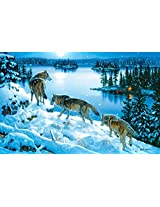 Moon Shadow A 1000 Piece Jigsaw Puzzle By Sunsout