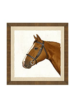 Horse Head Giclée Print II
