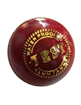 The Brand New PS - TEST leather English Cricket Ball pack of 2 balls