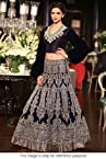Bollywood Replica Deepika Padukone Net and Moss Velvet Lehenga In Dark Blue Colour NC305
