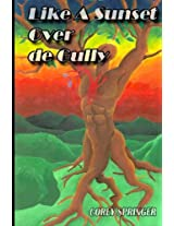 Like a Sunset Over de Gully: A journey from boy to man, in the land of the sea and sand.: Volume 1 (Journey to the Centre of his You-We-Verse)