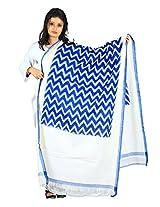 Blue Pochampally or Ikat Cotton Handloom Dupatta