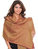 Exotic India Banarasi Scarf with Tanchoi weave - Color RedwoodColor Free Size