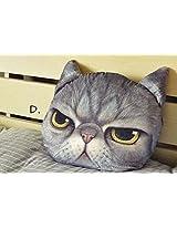 Besttime 32cm Cat 3 D Pillow Soft Plush Doll Toy (D)