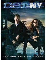 CSI: New York: Season 1