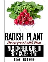 Radish Plants - How to Grow Radish Plants: YOUR COMPLETE GUIDE TO GROW RADISH PLANTS