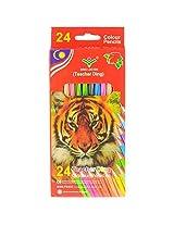 Neo gold leaf 24colour pencil