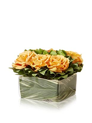Gold Rose Lemon Leaf Square