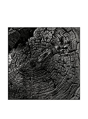 The Age Of Erosion Photography On Mounted Metal