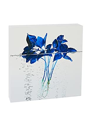 Art Block Blue Basil - Fine Art Photography On Lacquered Wood Blocks