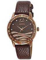 Aspen Analog Brown Dial Women's Watch - AP1812