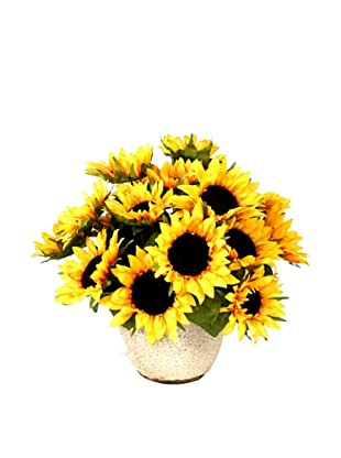 Creative Displays Sunflowers in Cream Pot