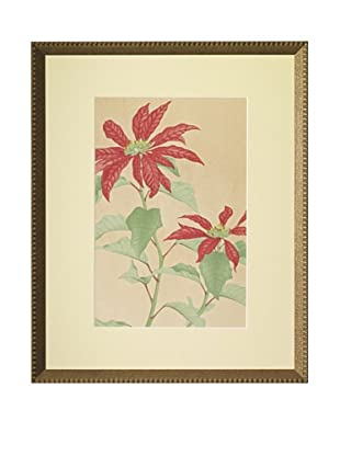 1929 Botanical Japanese Woodblock Poinsettia