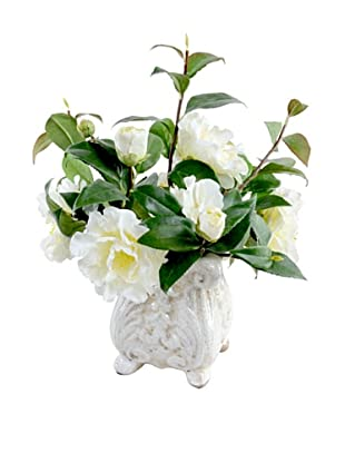 New Growth Designs Camellia Arrangement in French-Style Planter (White)