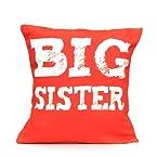 Giftsbymeeta Big Sister Rakhi Cushion (rakhi gift combos) RAKHIGIFTS8241