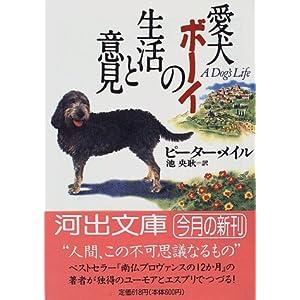 愛犬ボーイの大冒険の画像