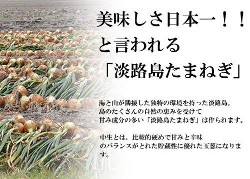 【訳あり】淡路島産/玉ねぎ/玉葱/約10kg/貯蔵性抜群/中生玉ねぎ