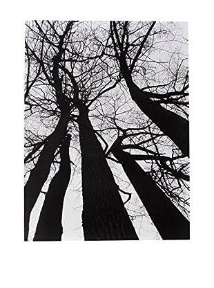 Contemporary Wood Leinwandbild Winter Tree