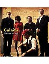 Calaita Flamenco Son