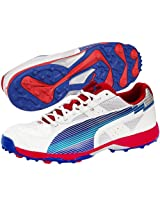 PUMA evoSPEED Cricket Rubber 11 UK MEN
